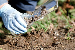 Person collecting a soil sample